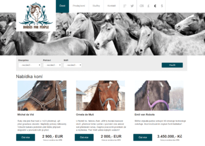 horses_for_people